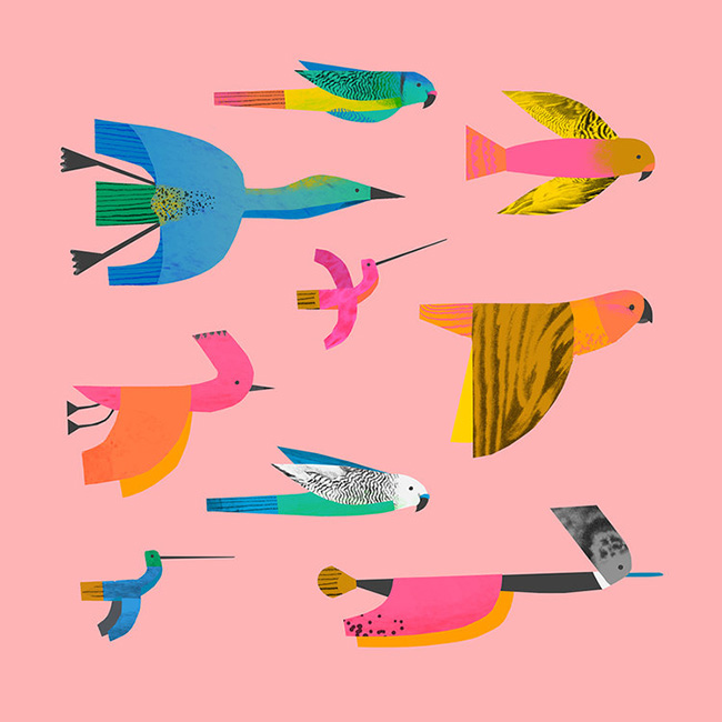 Birds+by+Natasha+Durley.jpg