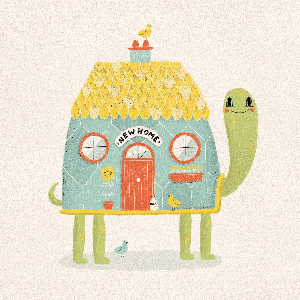 New-Home-Tortoise.jpg