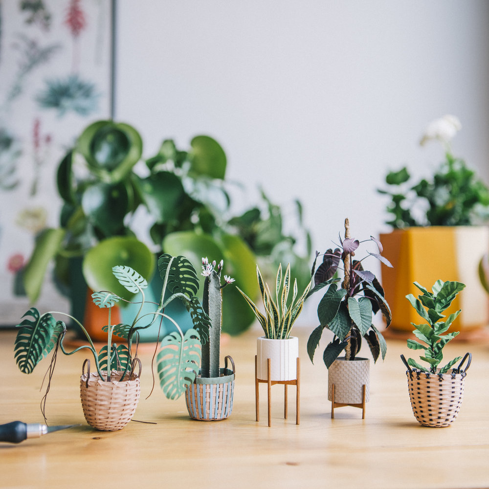 5:30 pm - I thought I'd show you a family photo of this series 💕 It's slowly getting bigger. Do you have a favorite plant? Let me know in the comments and I'll try to make it 🙌🏼 If you want to see a little more of my work you can follow me @littlerayofsunflower , I don't only make plants 😂. Thanks so much for tagging along 🙋🏻‍♀️💕