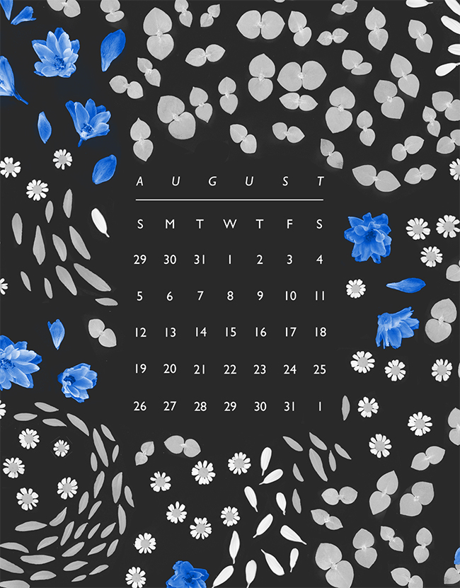 Papergang-Aug-2018-Calendar-BLOG.jpg