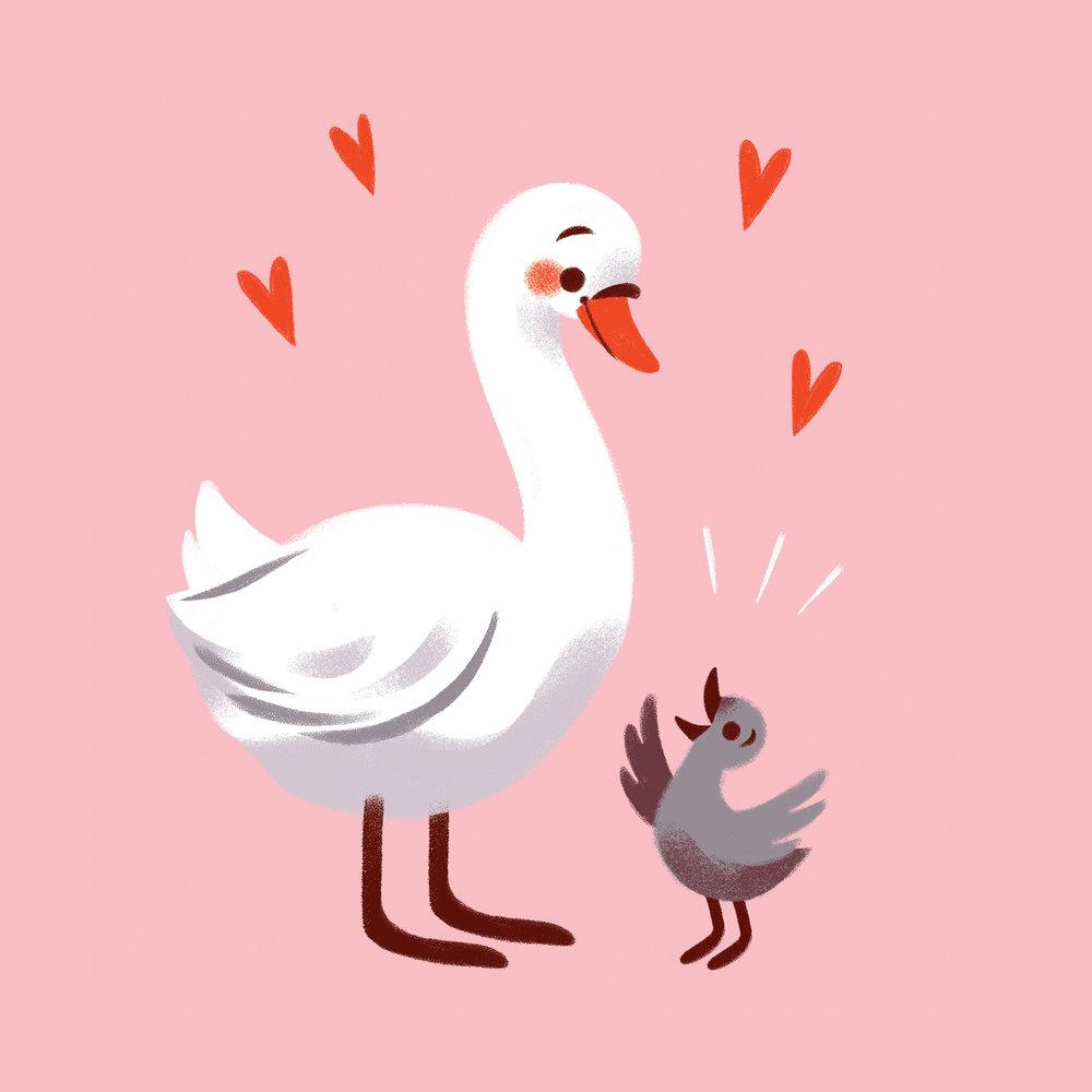 2_Swans.jpg