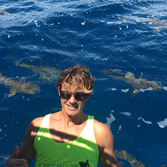 Dernier jour des vacances avec nos amis les requins !! On revient entier près à vous accueillir dès la semaine prochaine, pour des nouvelles et fantastiques expériences !!! Last day of holydays with our shark Friends . We will fine next week to welcome you for great and news expérience !! Thanks @mooreamoanatours @manateacouraud @nek.tu.cky @stephane.caussarieu  #ecoledesurfbiarritz #requin #crasymoment