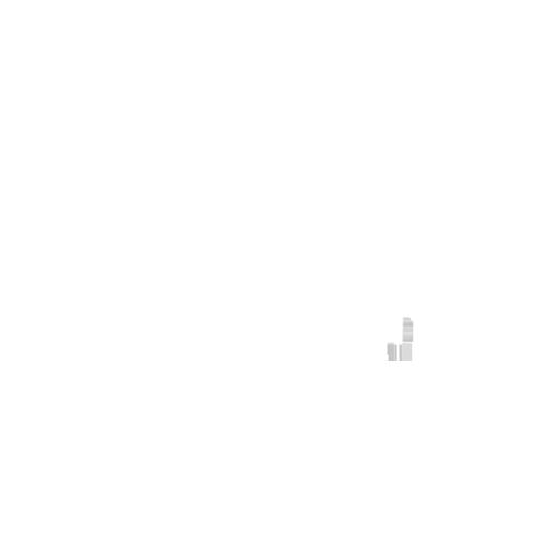 08_Regiolights.png