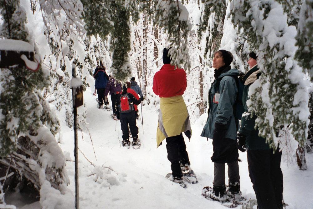 snowshoeing-fpo.jpg
