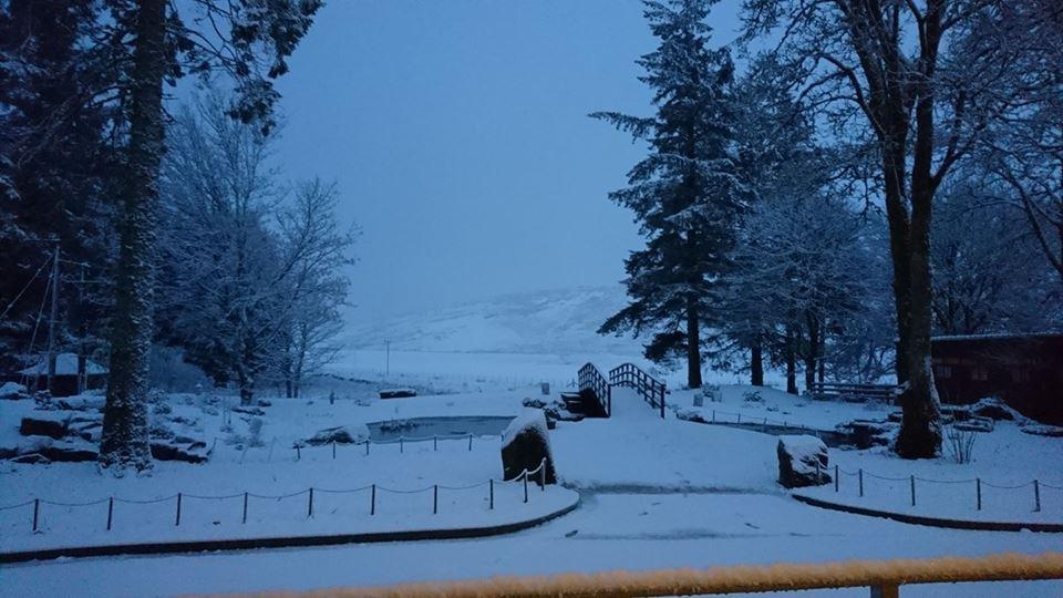 snow bridge.jpg