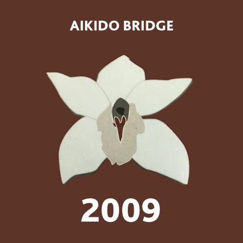 bridge09.jpg