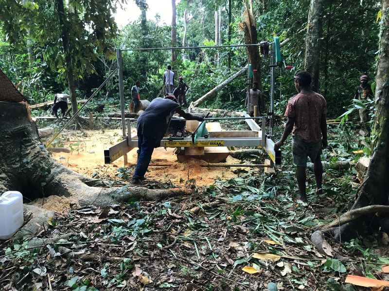 Milling wood in the jungle