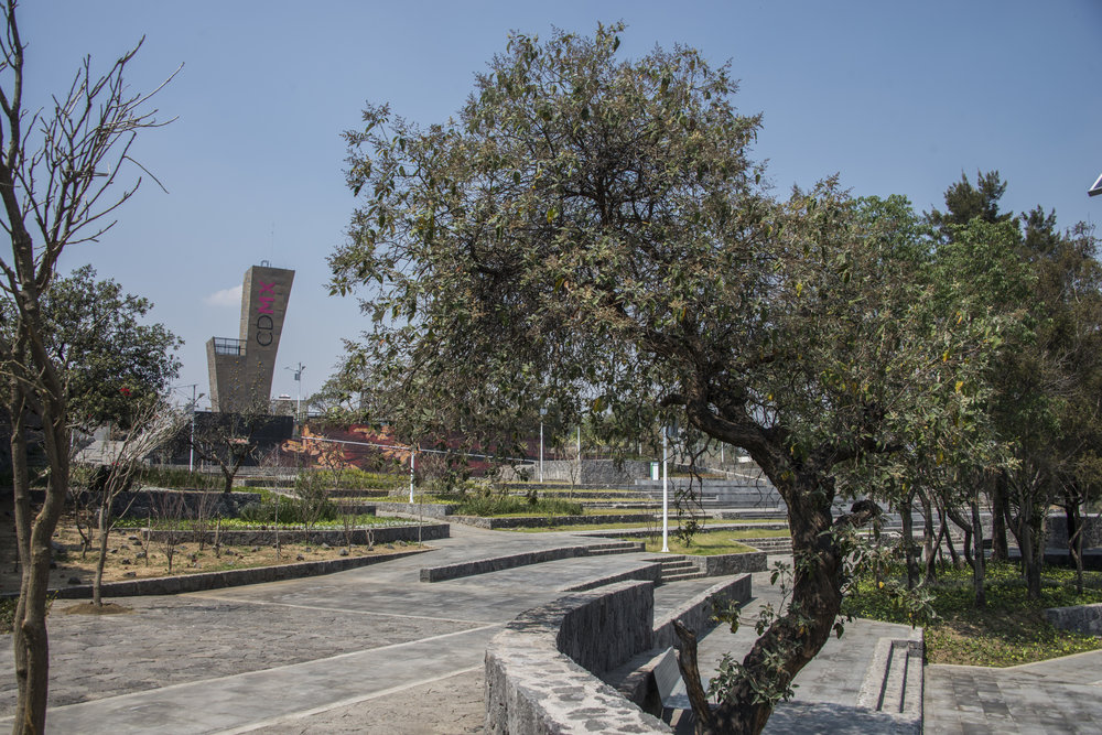 parque0435.jpg