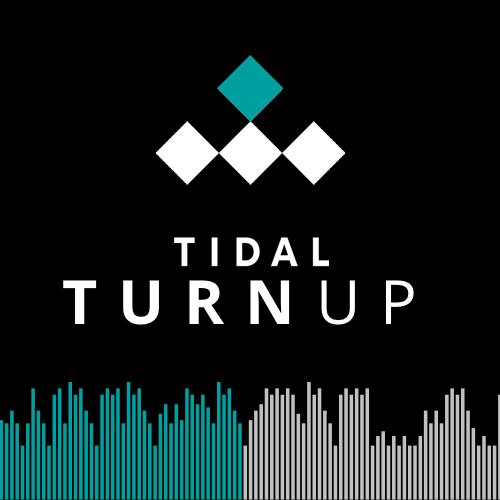 Tidal - Turnup - Square.png