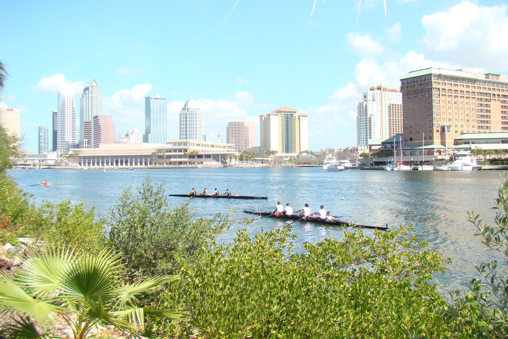 Tampa Skyline @ Regatta, 14 Mar 09.JPG