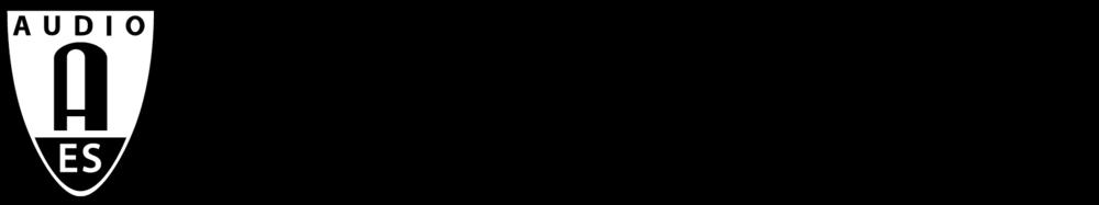 aes ny logo.png