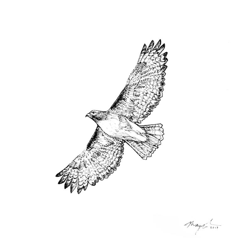 """Bird Medicine III   Acrylic and Ink 8"""" x 8"""", 14"""" x 14"""" framed 2017"""