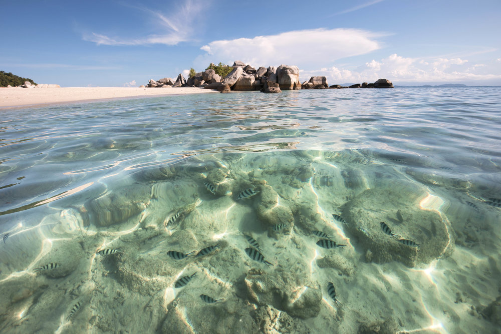 coral bay perhentian islands small.jpg