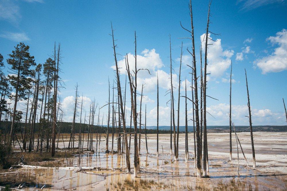 Yellowstone 2018 VSCO james glacier-29.jpg