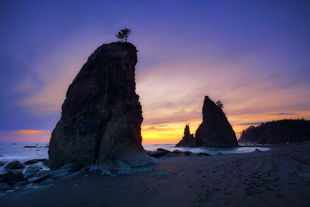olympic national park landscape photography-2.jpg