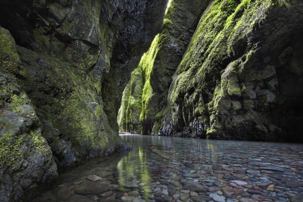 Oregon & Washington -