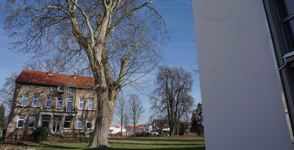 Blick auf die Villa und den Park