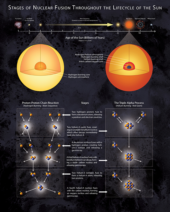 Stages of Nuclear Fusion in the Sun