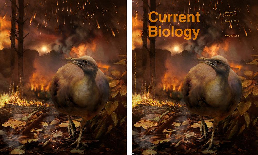 End-Cretaceous Forest Collapse