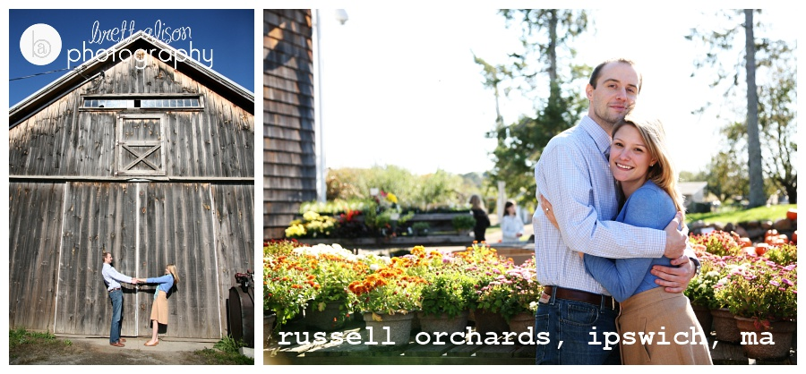 apple orchard engagement photos massachusetts