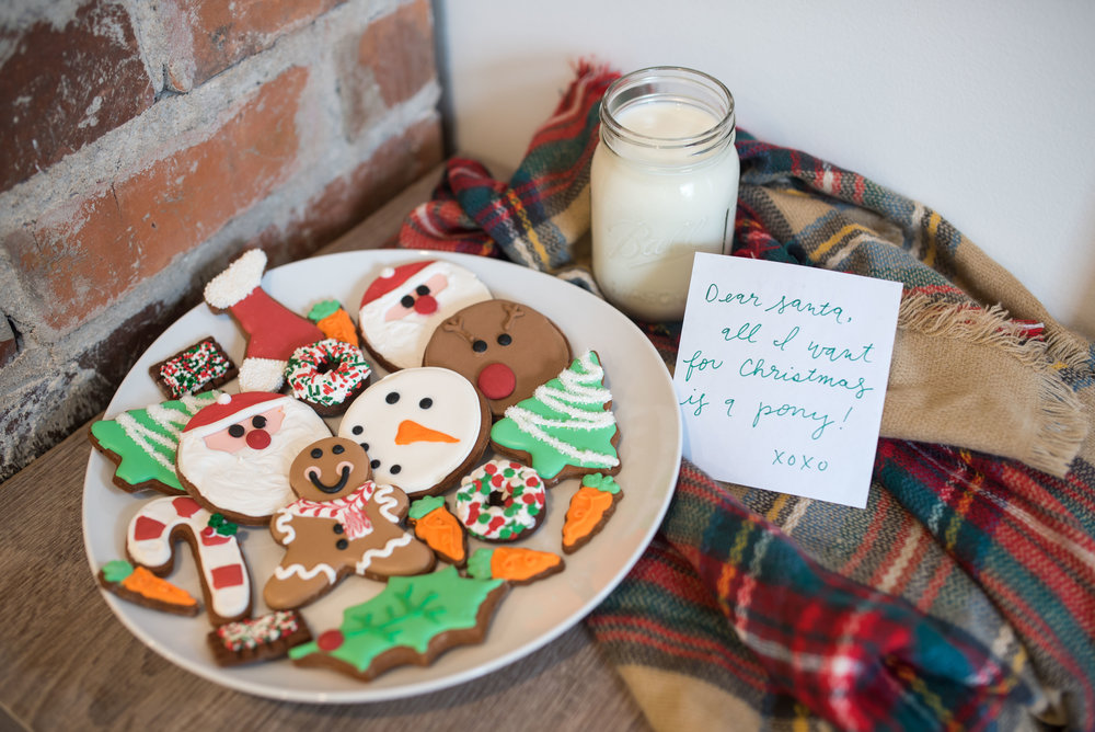well if this isnt the cutest plate of christmas cookies i dont know what is the craziest thing about this mouthwatering shot these are horse treats - What Is A Hard Candy Christmas