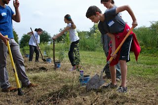 close up of students digging holes for blueberries.jpg