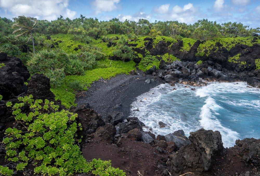 Maui Mar 2015-224-120.jpg