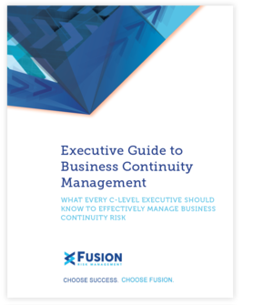 Fusion+Risk+Management+Executive+Guide.png