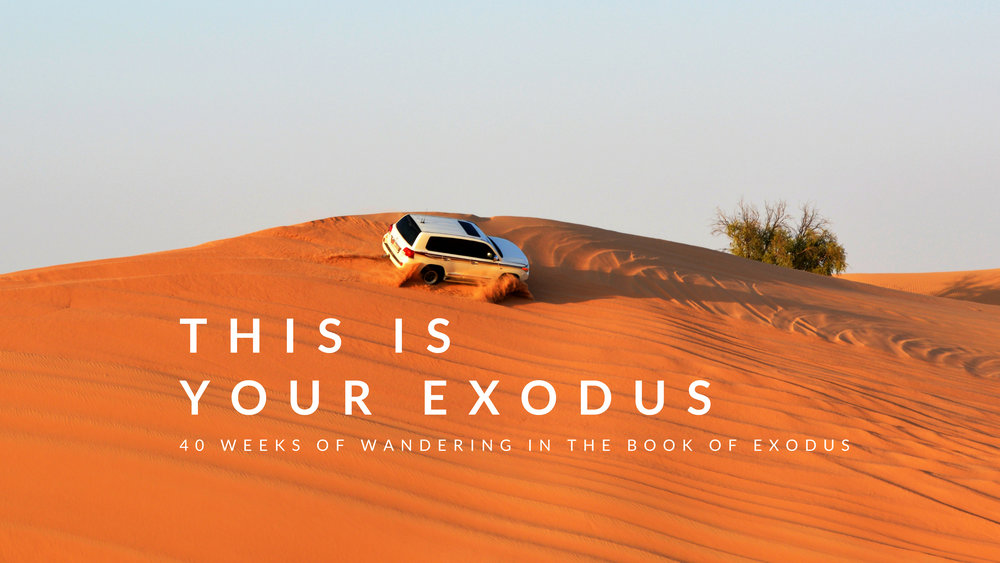 EXODUS GRAPHIC.jpg