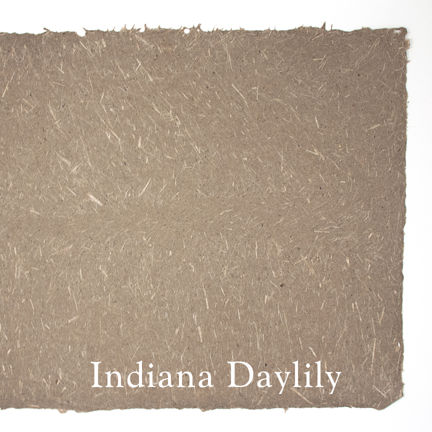 Made from the leaf of the orange daylily flower you may see on country roadsides. This fiber is grown on the HPP homestead in which it provides so many animals and insects with food, shade and camouflage. When frost comes in the fall, the leaves are harvested. This paper is internally sized and comes in a natural medium brown and a pigmented black.