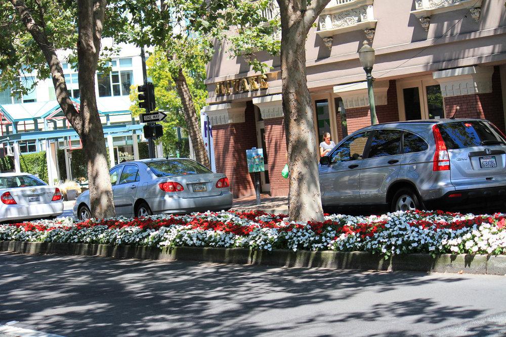 Palo Alto California.jpg
