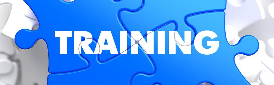 banner-skills-training.jpg