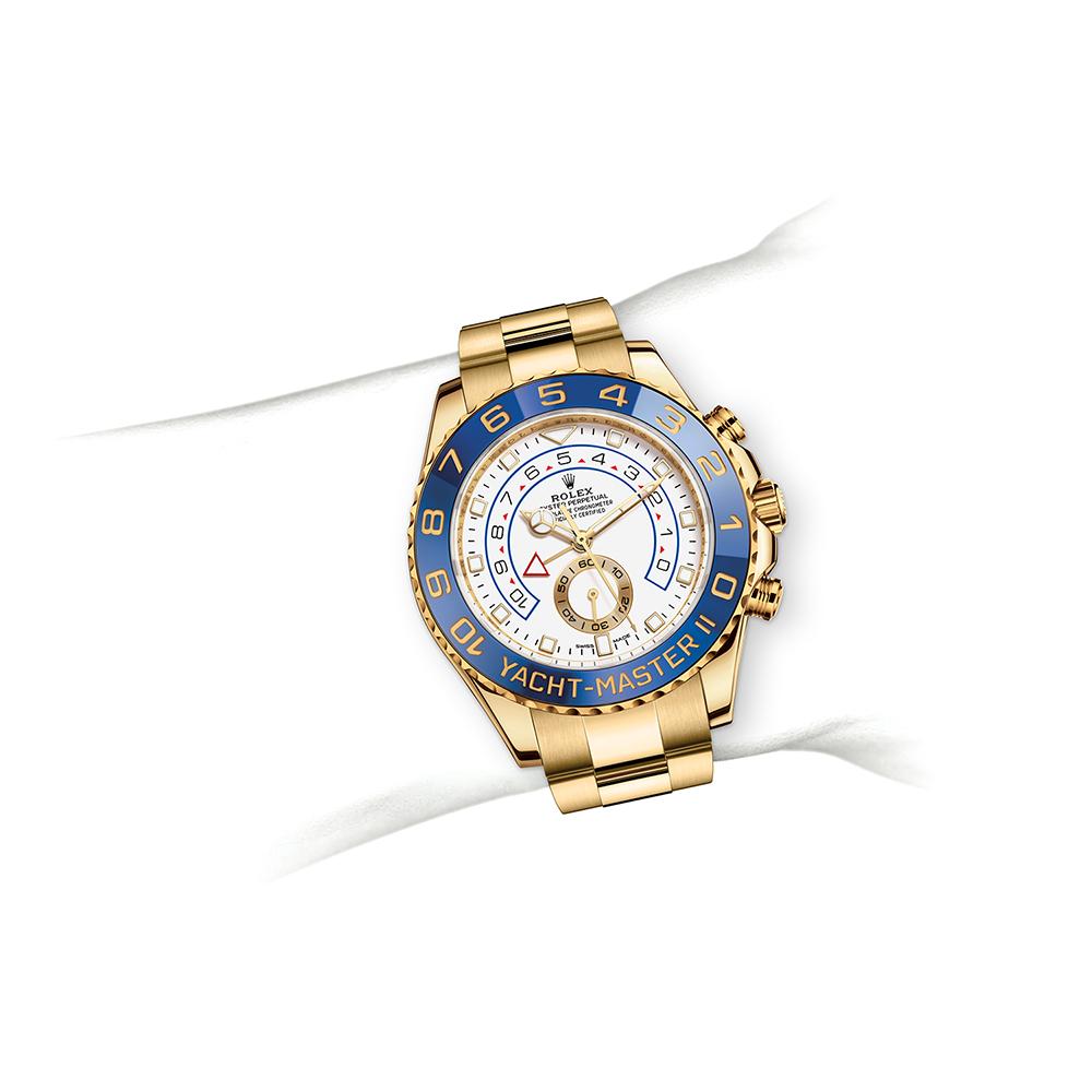 M116688-0002_watch-on-wrist.jpg