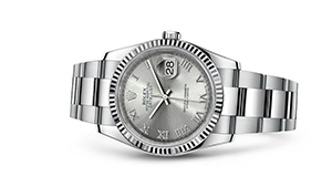 """DATEJUST 36<br><span class=""""watch-des"""">Oyster, 36 mm, Oystersteel and white gold</span>"""