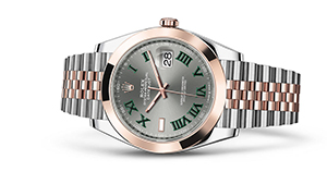"""DATEJUST 41<br><span class=""""watch-des"""">Oyster, 41 mm, Oystersteel and Everose gold</span>"""