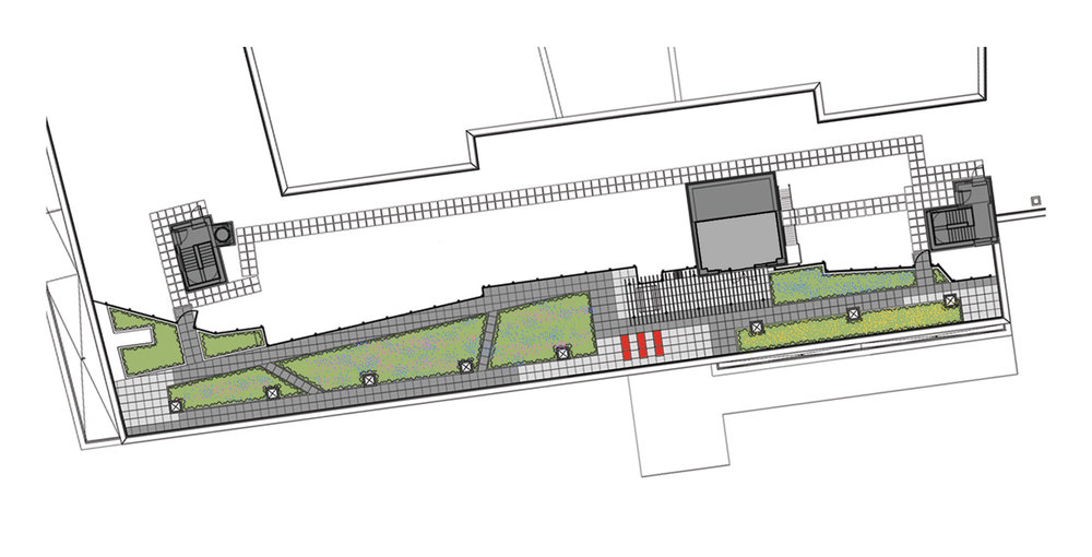 Roof Garden Plan.jpg