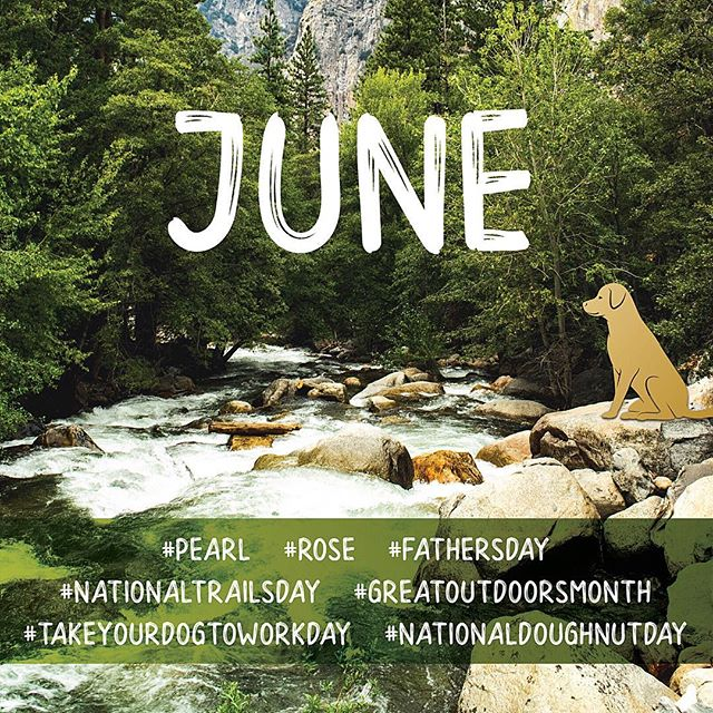 Let's tune into June! ⠀⠀ #june #pearl #rose #fathersday #fathersday2018 #nationaltrailsday #nationaltrail #greatoutdoorsmonth #greatoutdoors #takeyourdogtoworkday #takeyourdogtowork #dog #dogs #nationaldoughnutday #doughnuts #summer #summertime #summervibes #camping #travel #traveling #nationalparks #junebeetle #worldenvironmentday #summersolstice #gemini #cancerzodiac