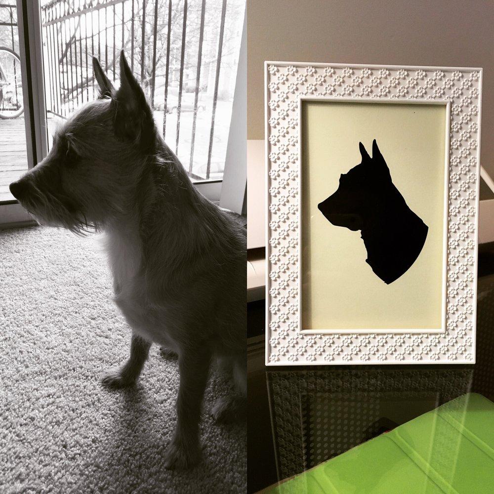 Pet Sihouette.jpeg
