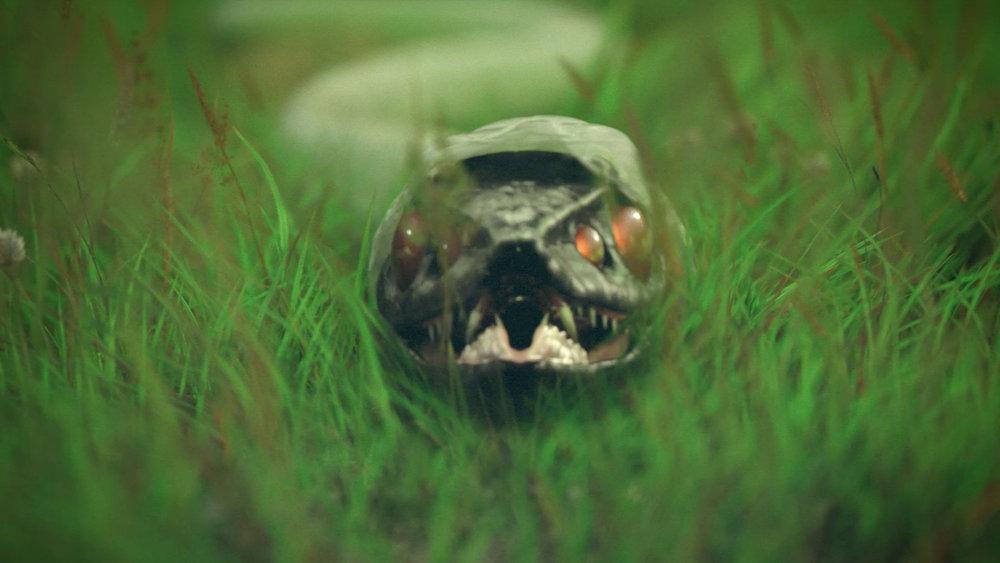 Four-Eyed Snake