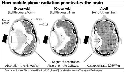 emf effects on the brain