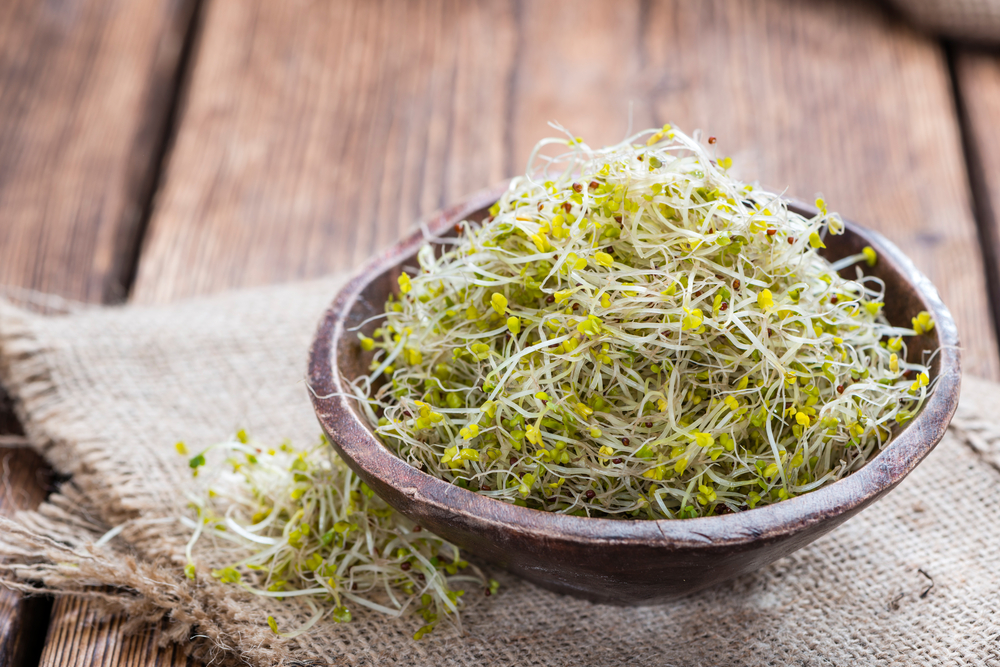Broccoli sprouts.jpg