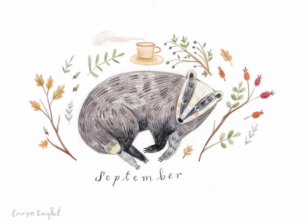september badger.jpg
