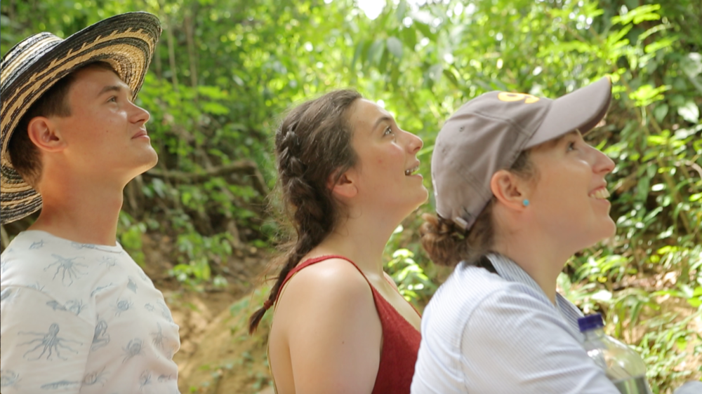 Screenshot_Los Colorados Fauna and Flora Sanctuary _Students looking up at a red monkey that gives the sanctuary its name.png