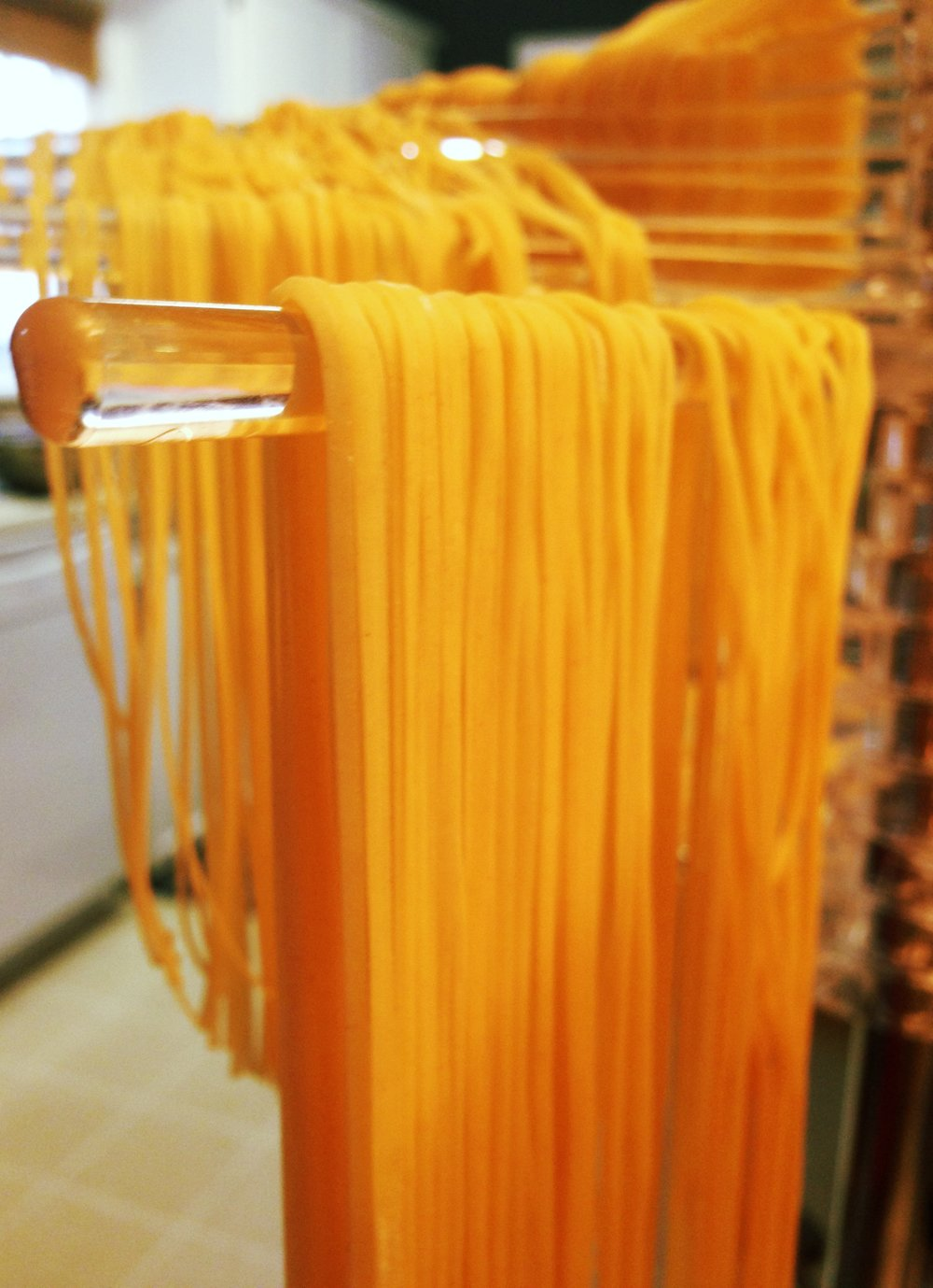 Homemade pasta noodles chilling out.