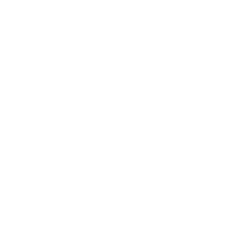 computer-chip2-2-512_blanco.png