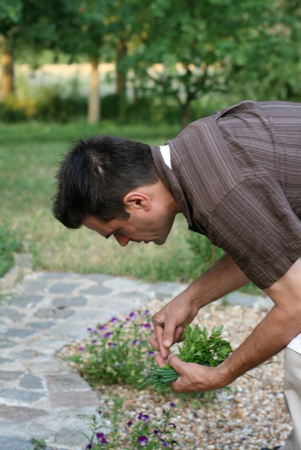 Chef Pascal gathering the garnishes for the soup from the front garden
