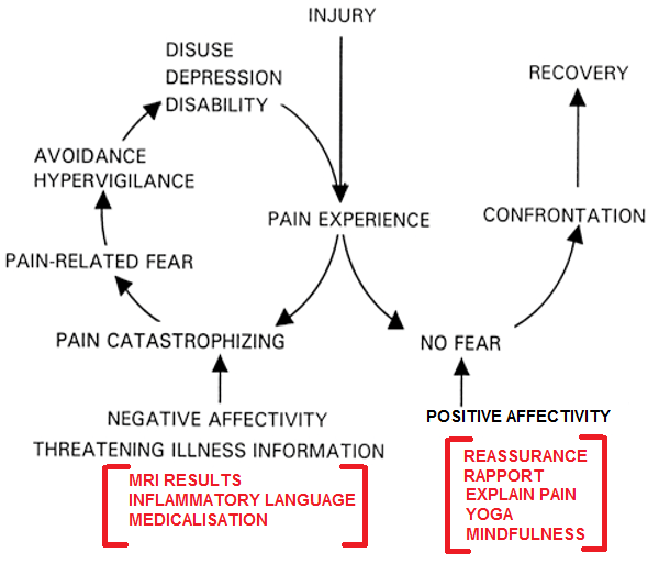 Fear-avoidance and its consequences in chronic musculoskeletal pain.png