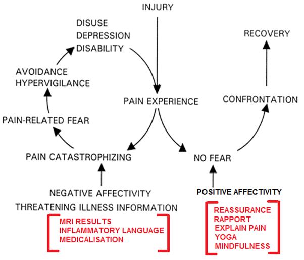 mri Psychological framework.png