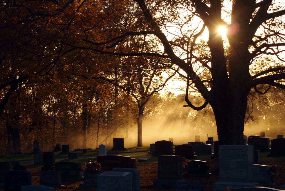 Cemetery sunlight.jpg