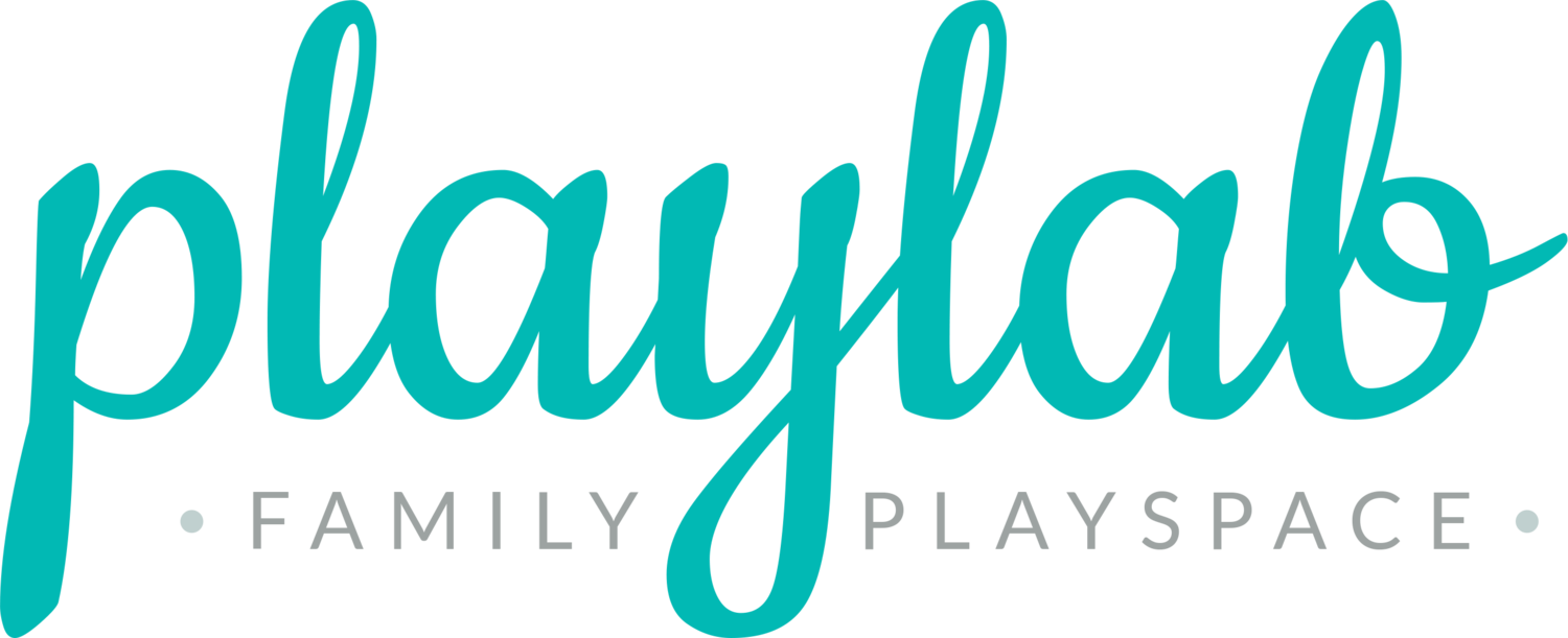 PlayLab Indoor Playspace- Pasadena's best indoor playground for children ages 0-4